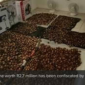 Two arrested for Illegal abalone - Cape Town