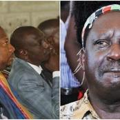 DP Ruto's Ally Shames Raila After Launching Lake Victoria Project, Says Odinga is in Government