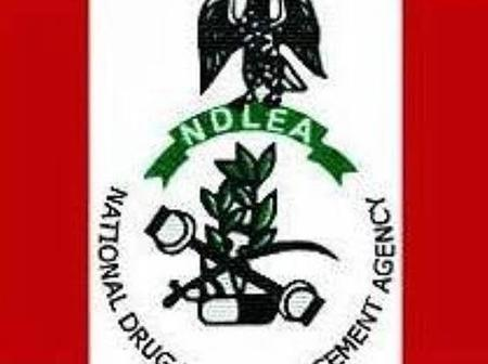 If you applied for a job at NDLEA, check out the latest information from them