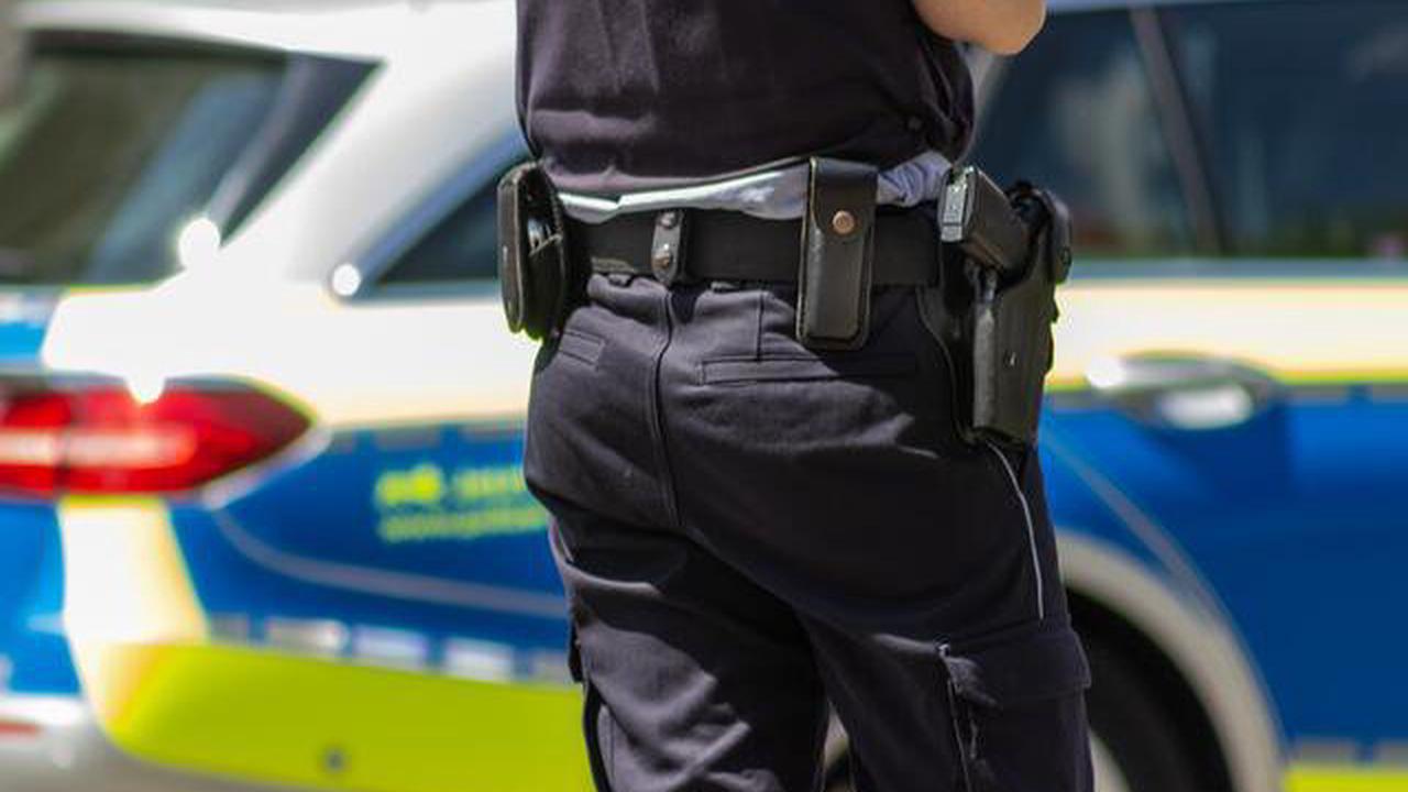 Polizeikontrollen auf der Rheinbrücke Germersheim: Straftaten, Ordnungswidrigkeiten, Verwarnungen, Mängelberichte
