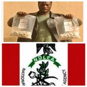 See The 1 Billion Naira Worth of Cocaine a Nigerian Man Was Caught in Sokoto State With