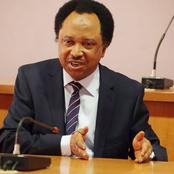 See What Sen. Shehu Sani Said About People Looting Warehouses Where Covid-19 Palliatives Were Hidden