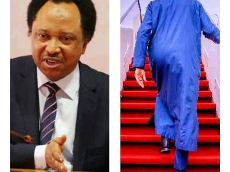 I Wanted To Beg Abike To Beg Nigerians In UK Not Embarrass Buhari, But I Changed My Mind- Sen. Sani