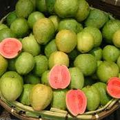 Eating guavas helps with these