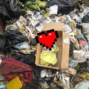 Mother Throws Her Newborn Daughter To The Refuse Dump To Protect Her Relationship