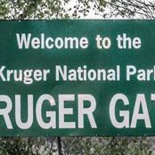 Time to find out Who owns the Kruger National Park.