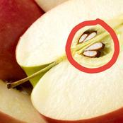 Too Much Of Apple Seeds Can Kill You.
