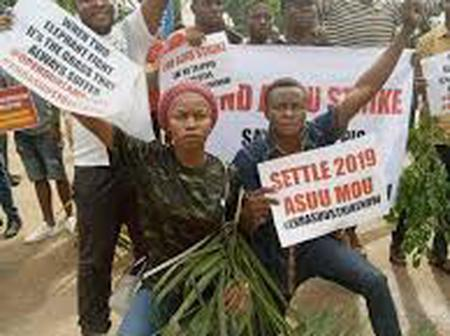 ASUU STRIKE: Protest to Commence on the 27th - NANS PRESIDENT