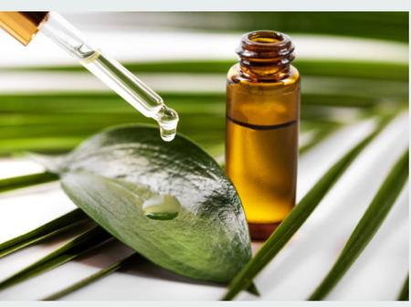 15 benefits of tea tree oil