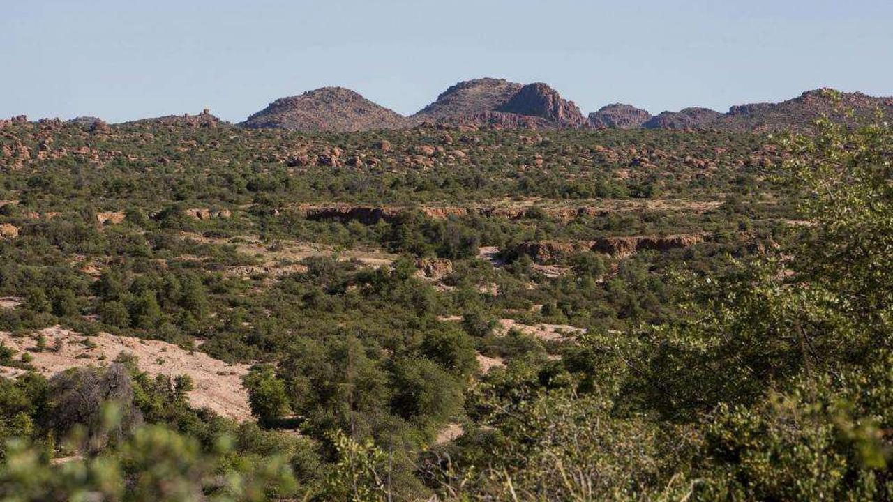 More than 5,000 people attend illegal party at Tonto national forest in Arizona