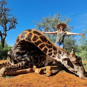 Limpopo Hunter Who Posts Pics With Dead Giraffe & Its Heart: 'Ban Her From Facebook'