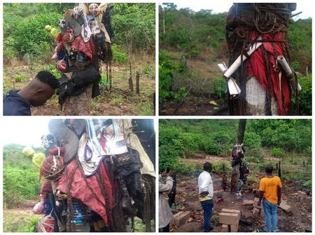 Tree with pictures and underwear discovered today in Abia State