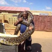 Millionaire Sangoma From Limpopo Keeps The Biggest Snake In Africa As His MaMlambo [OPINION]