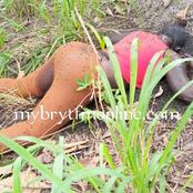 Sad news: Man killed his wife at Atwima Agogo in the Ashanti Region.