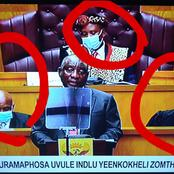 How powerful are these people against Ramaphosa? ANC Parliament History