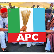 2023: 2 Prominent APC Politicians Who May Reconcile Before Election [Opinion]