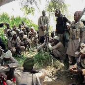 Boko Haram has taken over our community and economy – Baga residents cry out (Photos)