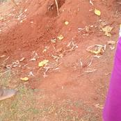 Unknown Person Digs A Hole In A Grave Where A Village Elder Was Buried Two Weeks Ago