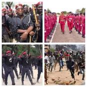 Opinion: 3 Ideas To Permanently End The Incessant Killings & Kidnappings In Nigeria