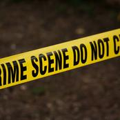 Police Found A Body Alongside The Road Whose Skull Had Been Disfigured By Dogs