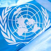 Opinion: UN Can Not Interfere In Nigeria Protest, See Four Things They Can Only Do
