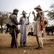 See 4 truthful facts about the Fulani people