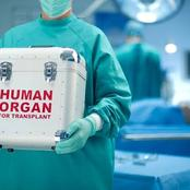 What Most People Do Not Know About Organ And Kidney Trafficking
