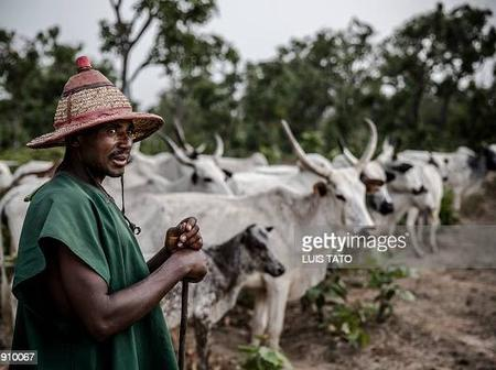 Fulani Herdsmen Are Not Only In Nigeria, See 10 Other Countries Where They Can Also Be Found