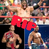 Checkout 5 popular wrestlers who died young.