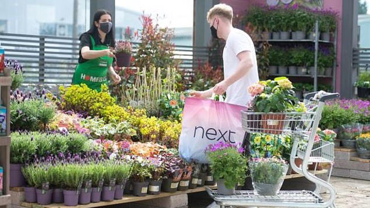 Buy plants with your shirts and trousers! Homebase opens mini-garden centres in six Next stores as retailers tap into Britons' newfound love for gardening