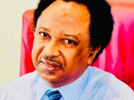 """""""Is Shehu Sani 100% Right?"""" —Look at What He Said about Bandits & Terrorists That Provoked Reactions"""