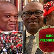 2023: How Realistic Is The Igbo Presidency?
