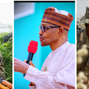 Today Headlines: I Thought My Daughter Would Be Rescued After Speaking With Buhari – Leah's Mother