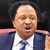Senator Shehu Sani Reacts To The Abduction Of Over 300 Schoolgirls In Zamfara. See What He Said