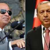 تركيا تعلن موقفها من ترسيم الحدود البحرية مع مصر لتقاسم الغاز شرق البحر المتوسط