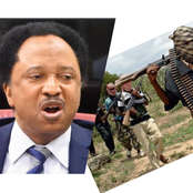 See what Sen. Shehu said about the 300 female students kidnapped in Zamfara, that caused reactions.