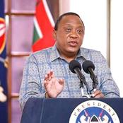 """All Political Rallies To Be Stopped, Mass Testing To Start,"" Uhuru Advised By Kabogo"