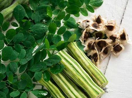 Health benefits obtained from Moringa leaves.