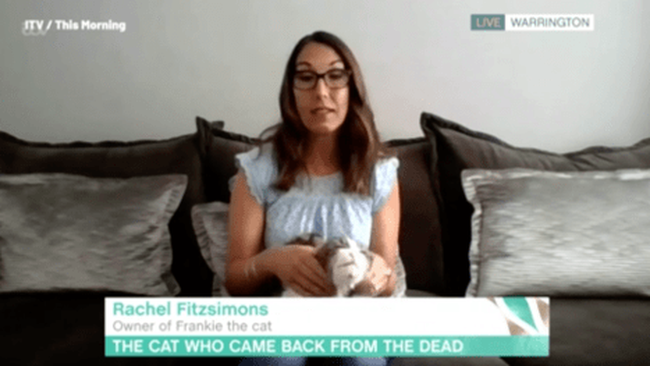 This Morning viewers baffled as guest reveals she cremated someone else's cat