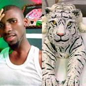 Reactions After Young Man Uploaded Photos Of A Tiger-Made Cake He Made