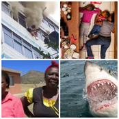 8 Times Mothers Went The Extra Mile To Save Their Children From Dangerous Situations