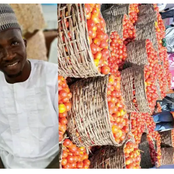 Check The New Cost Of Tomatoes A Northerner Shared That Is Causing Many Reactions On Social Media