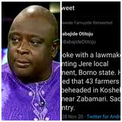 People React After Babajide Otitoju Confirmed The Massacre Of Over 40 Farmers In Borno
