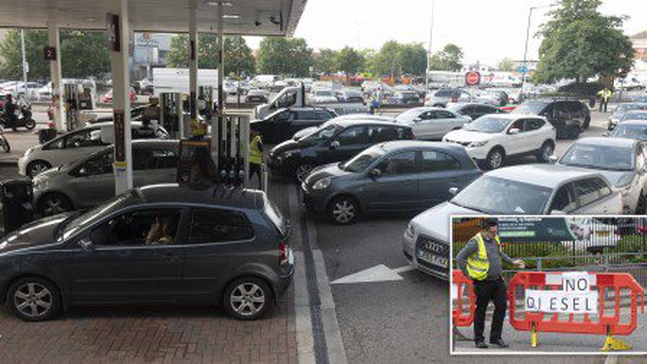 Government suspends competition law in bid to battle fuel crisis