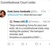 Zuma's daughter comes head- to- head with Fikile Mbalula after what he said about Zuma