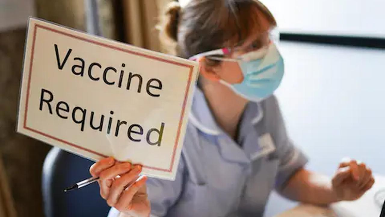 Coronavirus latest news:Nearly 12,000 lives saved by vaccines, study shows
