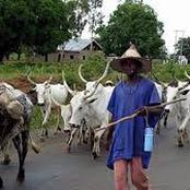 Sunday Igboho, Gani Adams, Afenifere To Begin Campaign Against Consumption Of Beef In The Southwest Region