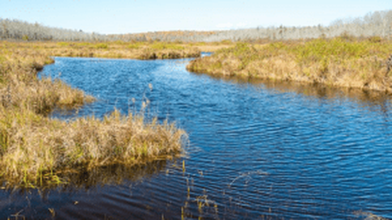 3,300 Acres Protected Along East Canada Creek Tributary
