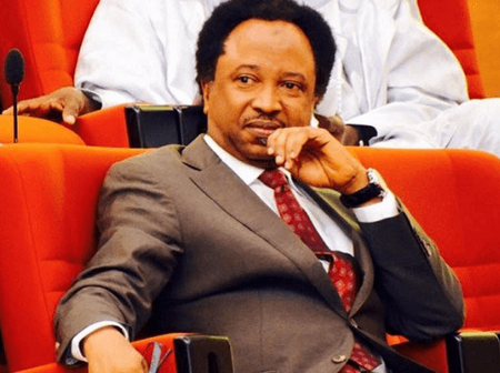 Check Out How Senator Shehu Sani Savage A Fan After Asking This Question