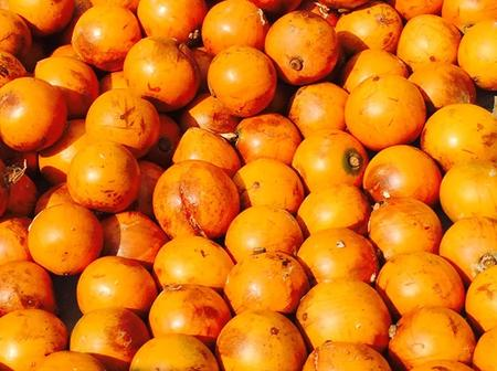 What Are Some Facts About African Star Apple (Agbalumo)